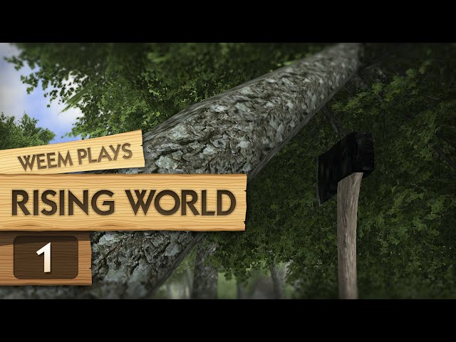 Руководство запуска: Rising World по сети