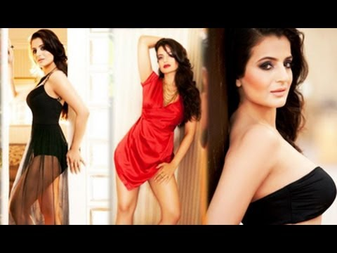 Bollywood Actress Amisha Patels Hot Sizzling Collection