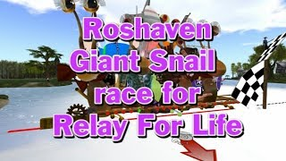 Giant snail race 517 18 May 26 RFL Rosehaven race 01