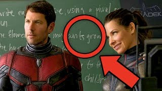 ANT-MAN & WASP Breakdown! Easter Eggs & Avengers 4 Theories!