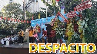 Despacito khai giảng năm học mới trường THCS & THPT Nguyễn Khuyến cực hay