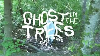 Ghost in the Trees - Thee Oh Sees (Fan Music Video)