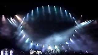 Pink Floyd Video - Pink Floyd   Live in Venice Italy 1989