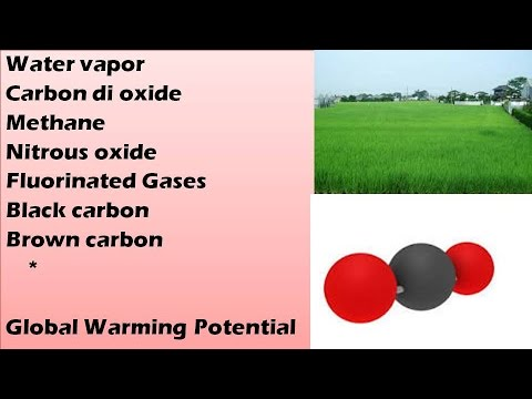 Online classes: Green House Gases: Global Warming Potential