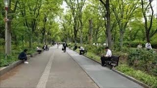 Lunch break in the 靭 (Utsubo) Park, Osaka, Japan