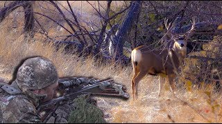 SUPER CLOSE Archery, All Wild Natural sounds of Nature! {Catch Clean Cook} Flat Iron Venison