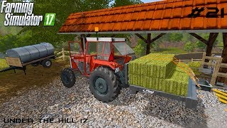 Getting sheeps | Under the Hill 17 | Farming Simulator 2017 | Episode 21