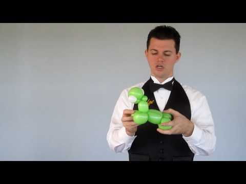 Balloon Library #34 - 3 Balloon Turtle - Your Balloon Man