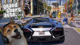 GTA 5 MODS MIT DOGE FACECAM!