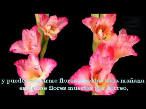 DEAD FLOWERS    THE ROLLING STONES       SUBTITULADA EN ESPAÑOL