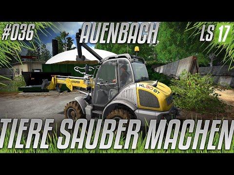 LS17 - Auenbach V2.4 #036 - Tiere sauber machen [HD] [deutsch]