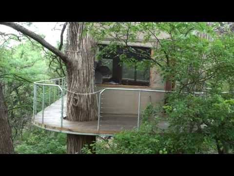 The Lofthaven Tree House Cypress Valley Canopy Tours