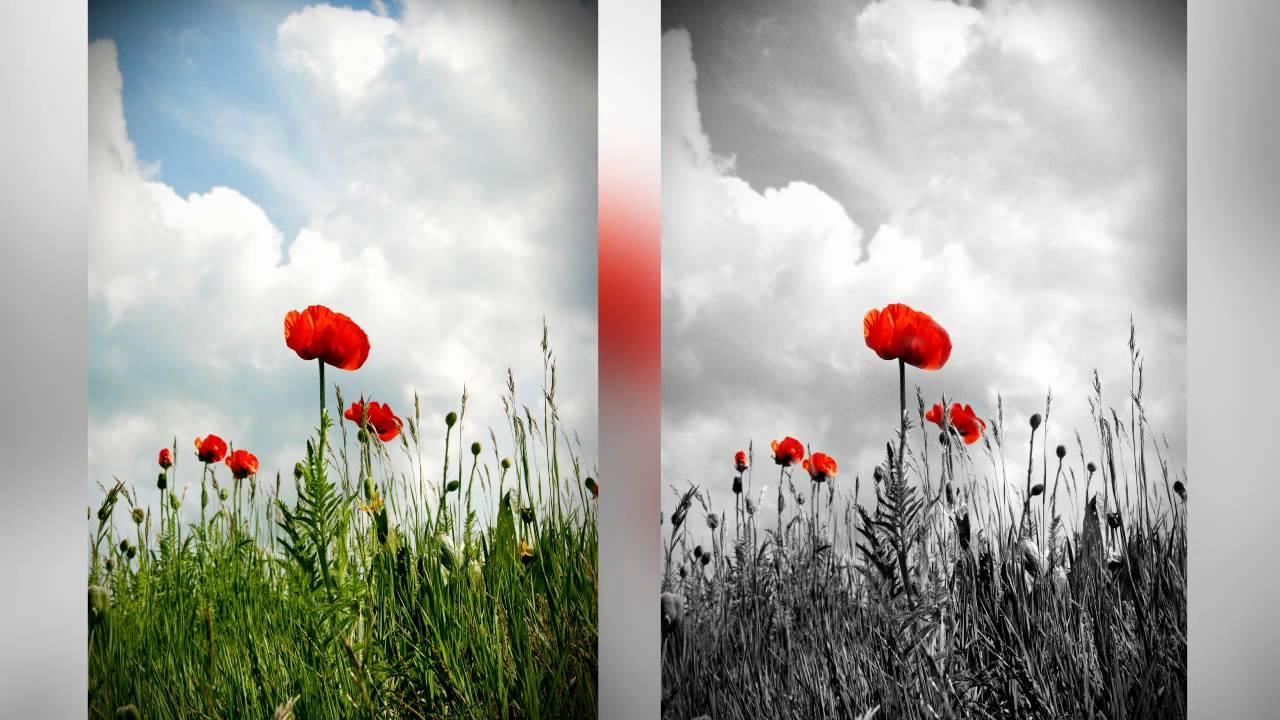 Photoshop Tutorial - Spot Color B U0026w