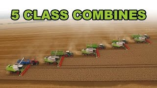 5 Combine Harvesters Working Together