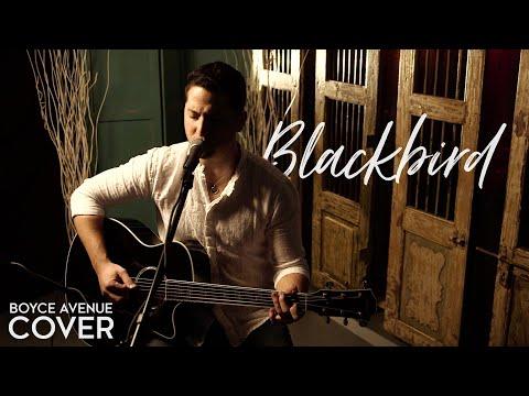 The Beatles  Blackbird Boyce Avenue acoustic  on Apple &