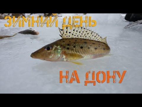 рыбалка на дону бирюка видео