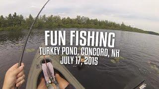 download lagu Fun Fishing - Turkey Pond gratis