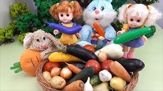 Learn Vegetables Names Video for Kids