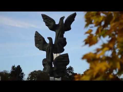 Jesień W Szczecinie