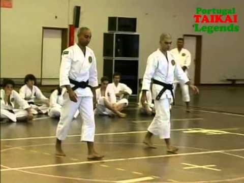 Shorinji Kempo - Portugal Taikai Legends.wmv Image 1