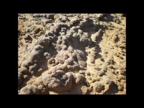 Zambujeira do Mar - Uma vis�o sobre as rochas e o litoral