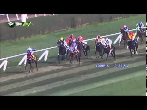 Vidéo de la course PMU PREMIO ZAR DE RUSIA H.