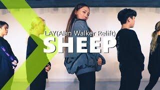 Lay - Sheep (Alan Walker Relift) / JaneKim Choreography.