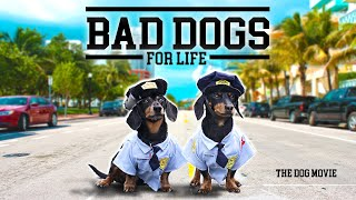 Ep#12: BAD DOGS FOR LIFE - The Wiener Dog Movie