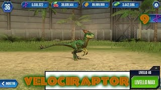 Jurassic World - LEVEL 40 VELOCIRAPTOR