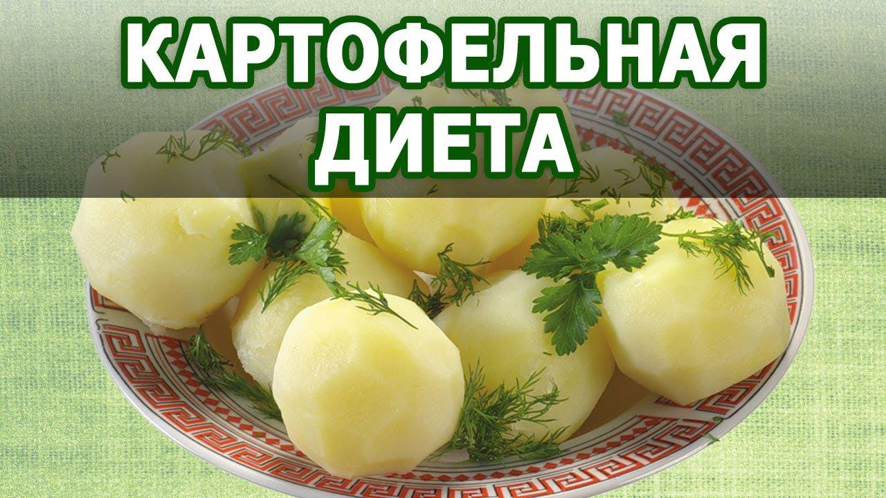 Диета На Вареной Картошке