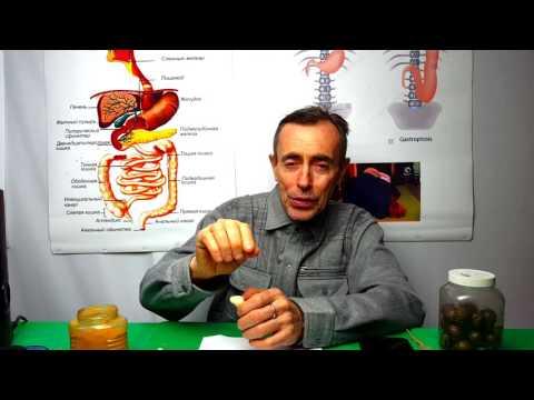 0 - Як поліпшити травлення? Препарати, ферменти, трави та продукти для прискорення травлення