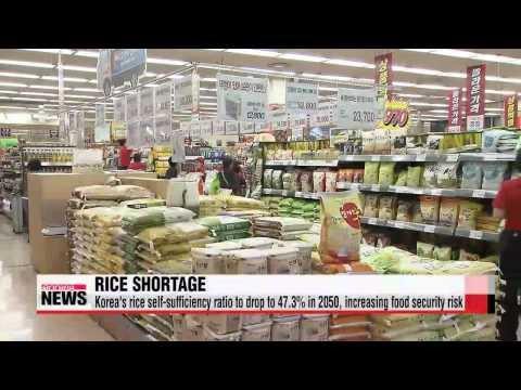 Global warming will cause Korean rice shortage in 2050   ″온난화 탓... 2050년 쌀