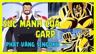 Sức mạnh Anh hùng Garp và Sengoku, quá khứ tất cả và mọi thứ