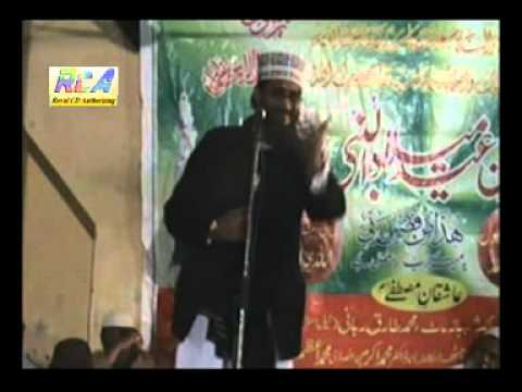 Syed Shahid Hussain Gardezi Taqreer In Program 2.flv video