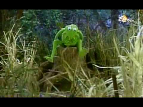 Sesamstraat - Kermit