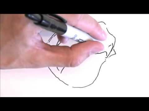 تعليم الرسم . كيف ترسم وردة. - 1 - YouTube.flv