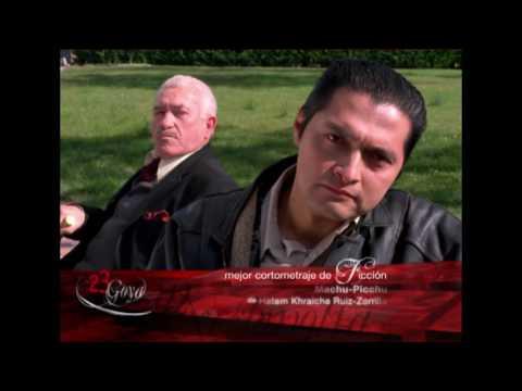 Miente, Mejor Corto de Ficción en los Goya 2009
