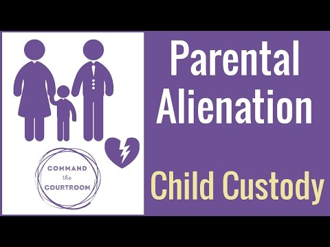 perspectives on parental alienation child custody and dispute resolution systems Alienacion parental (spanish) a broken system perspectives on parental alienation, child custody and dispute resolution systems ~ anita vestal.