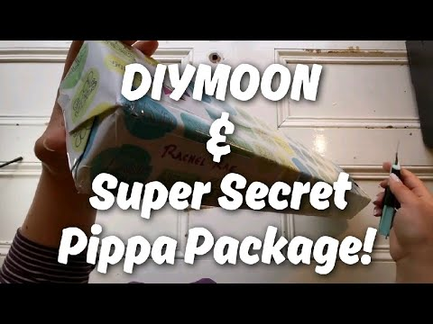 UNBOXING - Diymoon Shop & Pippa's Surprise Package!