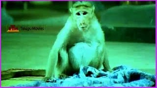 Madrasi - Baby Shalini & Monkey Comedy Adventures - In Chinnari Devatha Telugu Movie