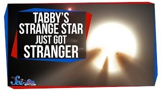 Tabby's Strange Star Just Got Stranger