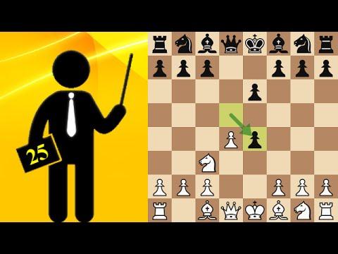 Standard chess game #25 - French Defense, Rubinstein variation