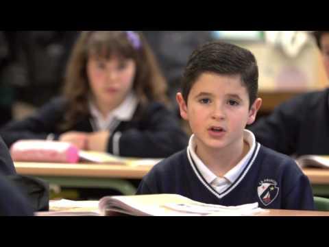 Colegios de la Asunción en España