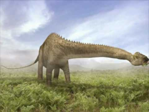 Diplodocus Day Video