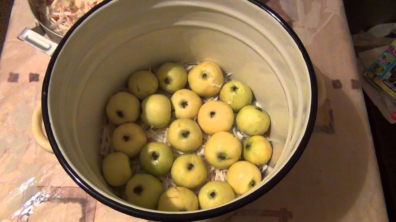 Как заквасить яблоки в домашних условиях 40
