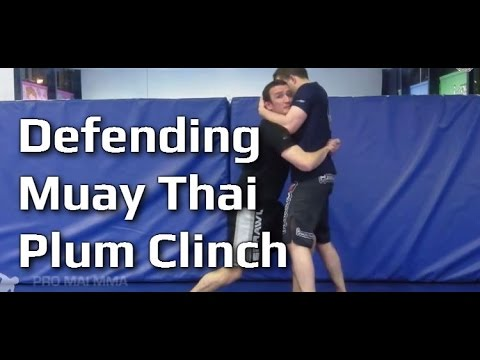 MMA 121 - Defending the Muay Thai Clinch / Double Neck Clinch Image 1