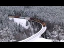 Winter Wonderland - Ray Stevens