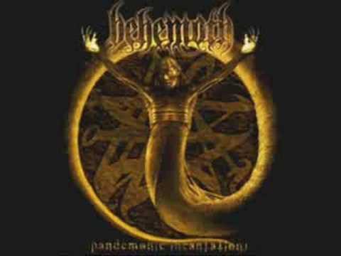 Behemoth - Thousand Plagues I Witness