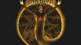 Watch Behemoth Thousand Plagues I Witness video