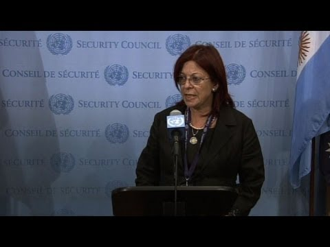 UN Security Council president urges restraint in Egypt